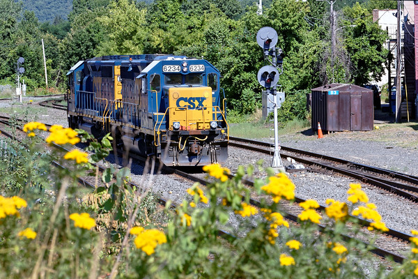 The colors of Summer - B740 light power eases back to it's train on the controlled siding in the yard at MP83. 7/27/2016 - 598C2236dK