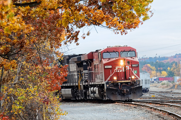 Tucked away in the Hill yard in Ayer was train 23K's power with a CP leader. 11/5/2016 - 598C7498dK