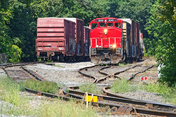 Like snakes in the grass...<br /> NECR 3040 with a cut of cars for the Mass Central. 8/25/2016 - 598C4042dK