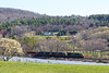 CSX train Q427 rolls through early Spring color near MP79 in Palmer, MA. 4/23/2017 - 598C1543dK