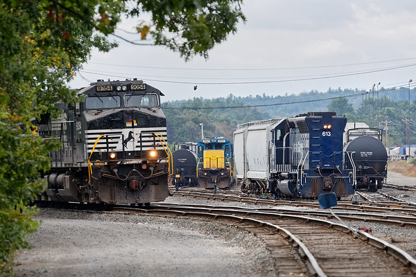 Train 23K's power peeks around the trees as switchers AY-1 and AY-4 work deeper in the Hill Yard. 9/14/2017 - 598C3615dK