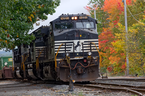 Flanked by some rich Fall color down in the Hill Yard, AY-1 handles the switching duties with three large NS units.<br /> 10/8/2018