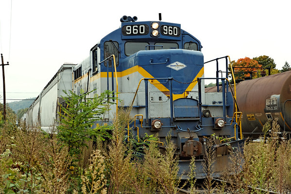 Through the puckerbrush - Mass Central 960 works the yard in Ware, MA. 10/04/2012 - 598C2673dK