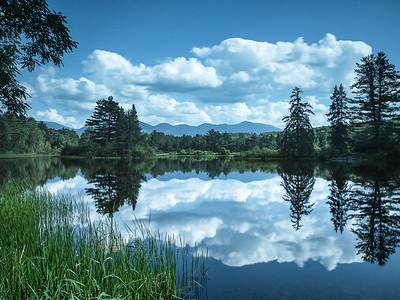 Coffin Pond Summer Afternoon