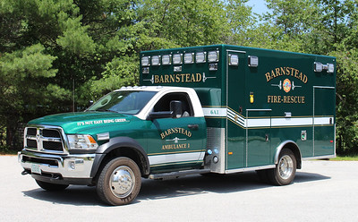 Ambulance 1   2016 Dodge / PL Custom