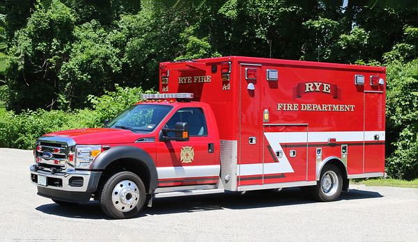 Ambulance 2.  2017 Ford F-550 / Lifeline