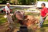 _kbd8416 2014-05-24 Irrigation System