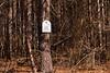 _KBD0173 Mooresville 2013-02-01