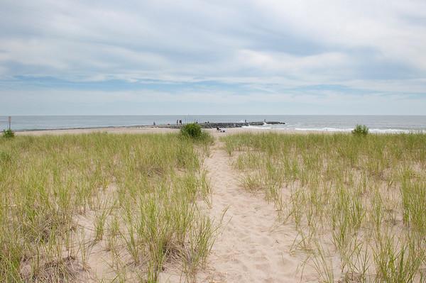 Asbury Beach Grasses