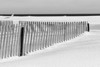 Belmar Snow Fence BW DSC_2488