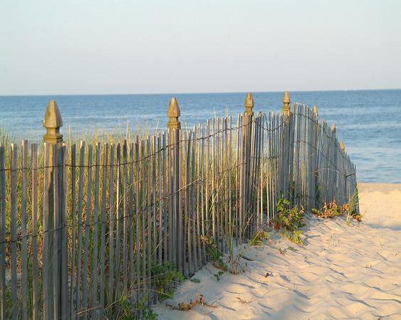 Fancy Osprey Beach Fence