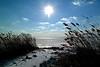 Island Beach Bayside Launch 1 12x18  DSCF3212