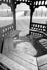 Gazebo View vert B&W DSC_8984
