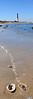 Lighthouse & Shells Pano 12x36 vert DSC_2470