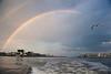 Inlet Rainbow & Gull DSC_0424