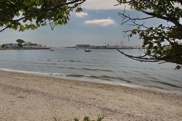 Dog Beach DSC_5163