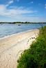 Dog Beach vert DSC_5121
