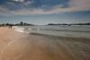 Dog Beach DSC_5370