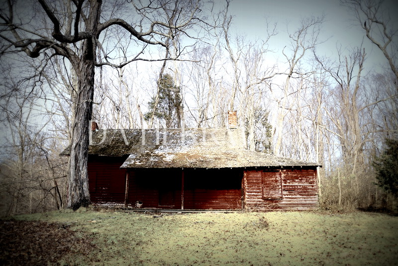 "Ringwood Cabin - ""Consigned to Oblivion"" Series (c)DAHerrmann 2012"
