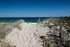 Ocean Dunes Walk DSC_1528