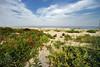 Spring Lake  Summer Dunes DSC_9516