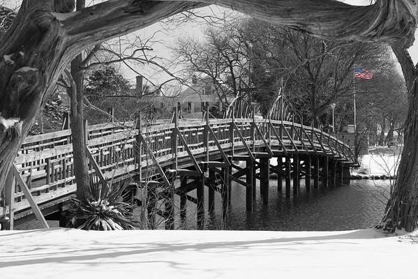 Spring Lake Bridge & Tree B&W 12X18 DSCF6070
