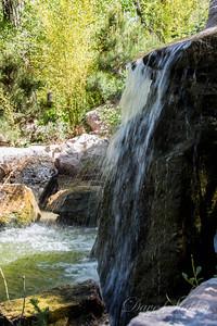 Botanical Gardens 0513-0235