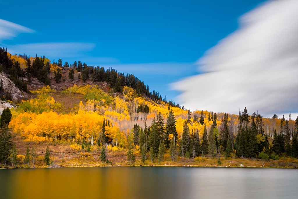 Last bit of fall colors