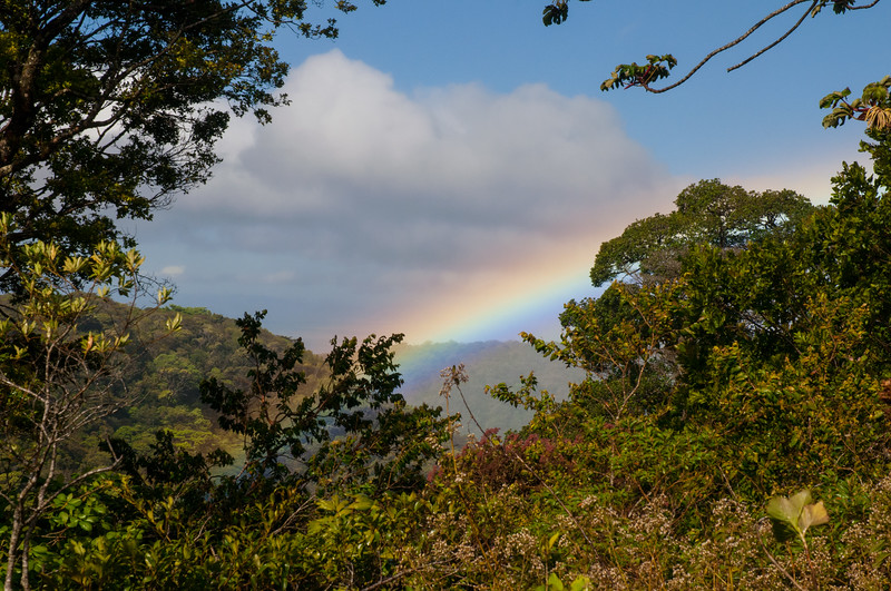 In February we spent a week family vacation in Monteverde, Costa Rica.