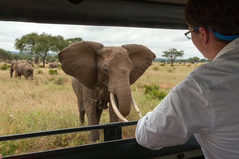 John watches the elephants of Tarangire National Park.