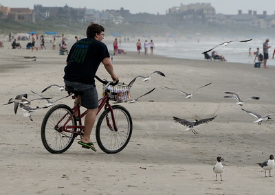 John chases seagulls at Kiawah Island, South Carolina.
