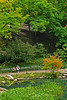 Central Park - 2008
