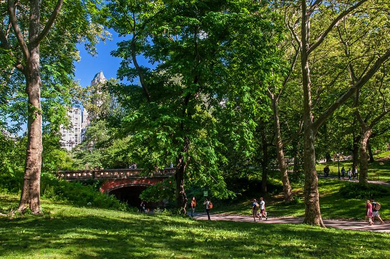 Central Park - 2016