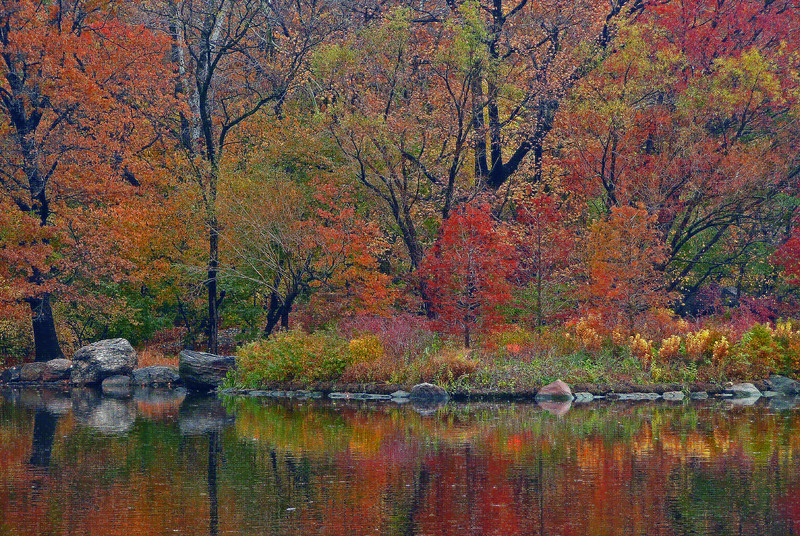 Fall along The Lake - Central Park - 2008