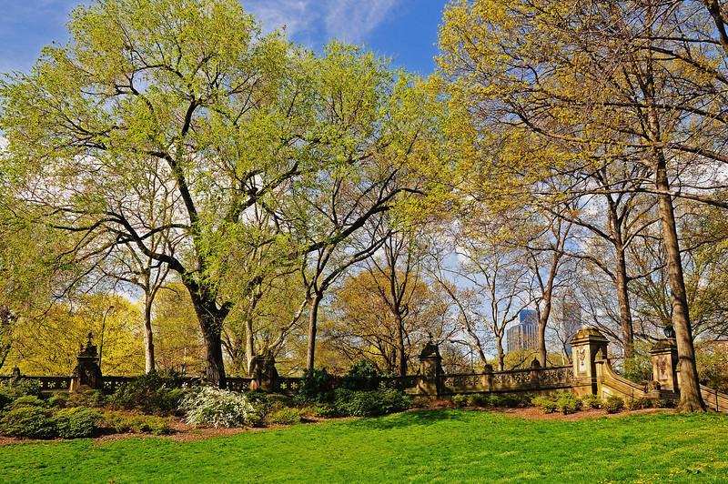 The Terrace - Central Park - 2009