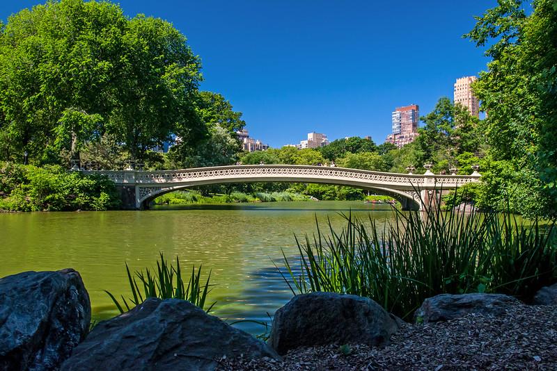 The Bow Bridge - Central Park - 2016