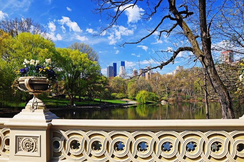 The Bow Bridge - Central Park - 2009