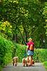 Dog walking in Central Park - 2008