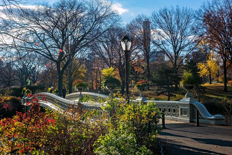 Bow Bridge - Central Park - 2015