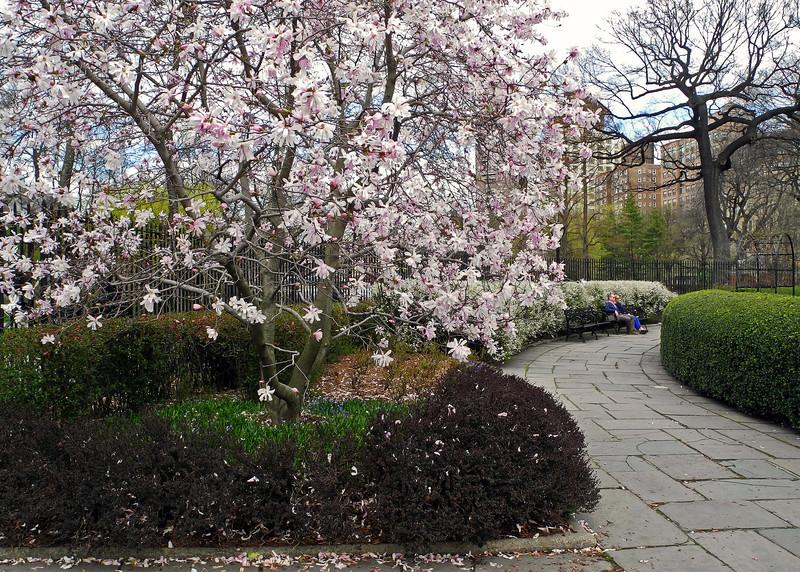 Conservatory Garden - 2013