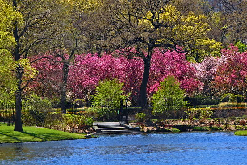 Conservatory Garden in Central Park - 2012