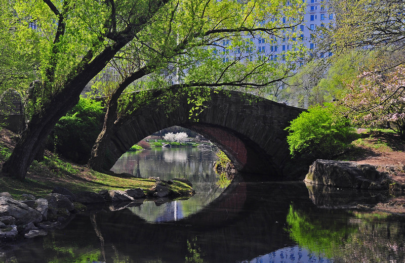Gapstow Bridge - Central Park - 2009