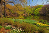 Spring along The Lake - Central Park - 2009
