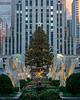 Rockefeller Center - 2015