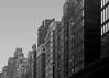 Park Avenue - 2012