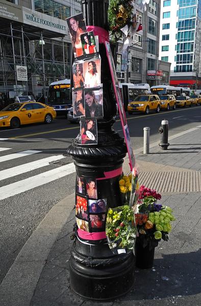 Memorial for Cristina Brea - Union Square - 2012