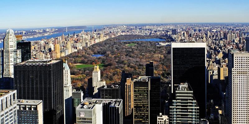 Central Park - 2011