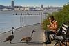 Riverside Park - 2013