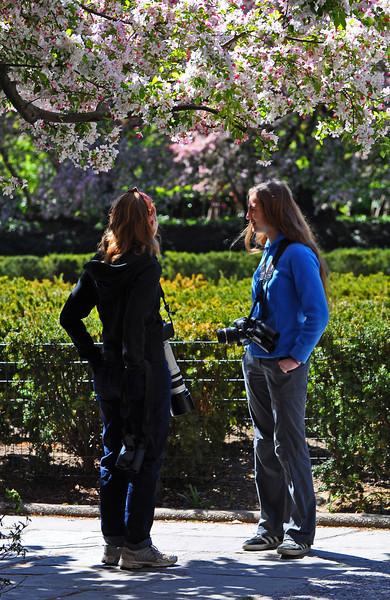 Conservatory Garden in Central Park - 2012