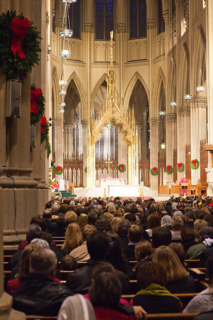 St  Patrick's Cathedral _9884